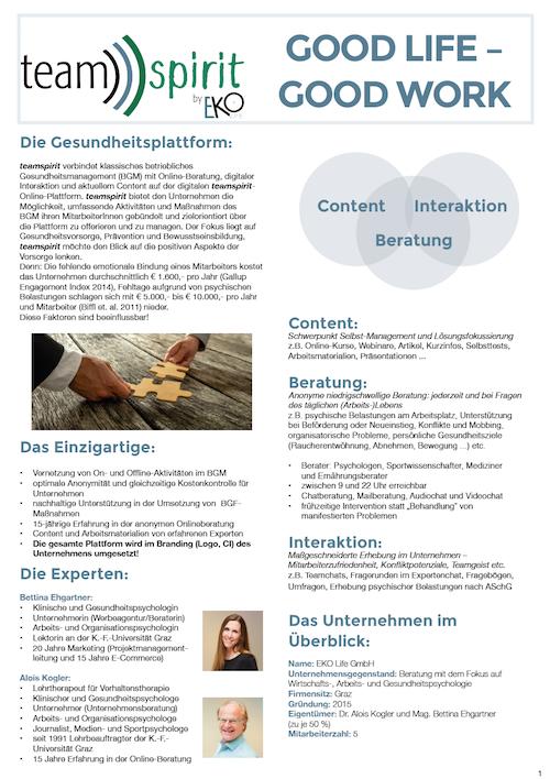 produktblatt_teamspirit