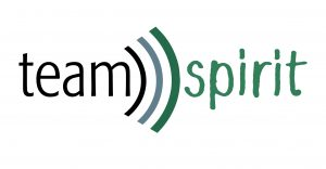 teamspirit Logo